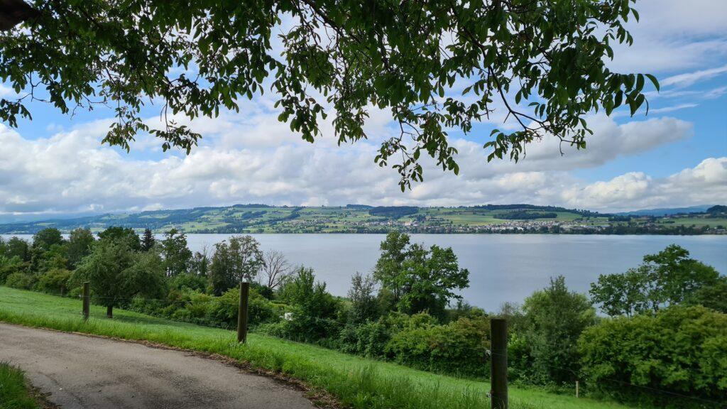 Balade familiale à vélo autour du lac de Sempach, dans le canton de Lucerne: vue sur le lac de Sempach depuis le Römerweg