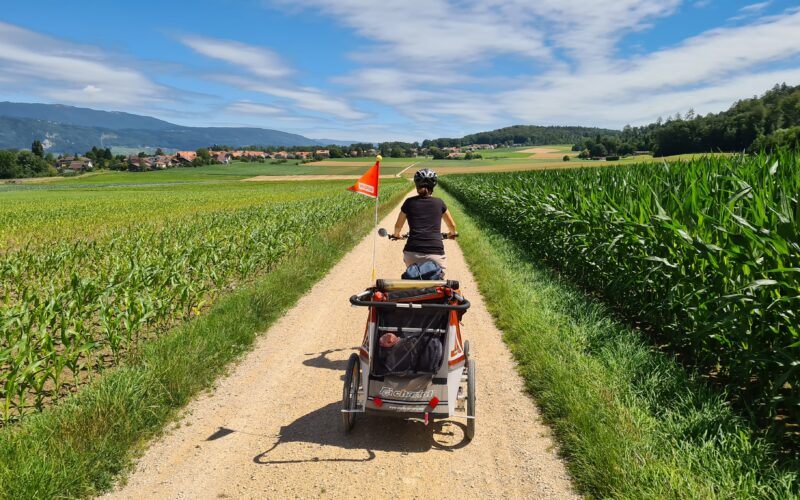 Familienvelotour im Seeland: Fahrt mit Veloanhänger mit Kind von Ins nach Erlach über eine Naturstrasse