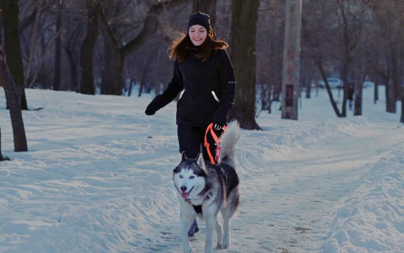 Eine Frau läuft mit einem Husky auf einem verschneiten Weg